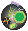 Slimeball Light Claw & Glow Target additional picture 1