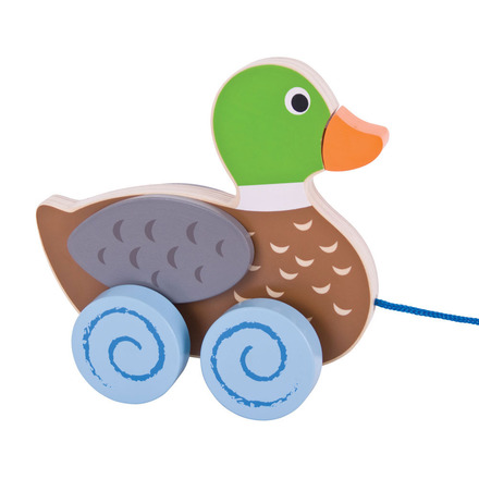 Duck Pull Along picture