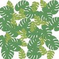 Tropical Palm Leaf Del Sparkle Confetti