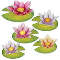 Water Lily Paper Flowers