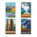 Travel America Nat'l Park Poster COs