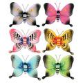 Majestic Butterflies