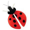 Nylon Ladybug