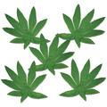 Tropical Fern Leaves