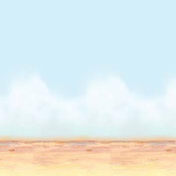 Desert Sky & Sand Backdrop picture