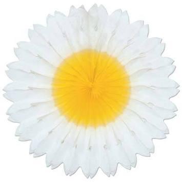 Daisy Fan picture