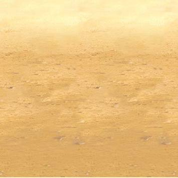 Desert Sand Backdrop picture