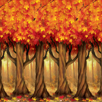 Fall Trees Backdrop picture