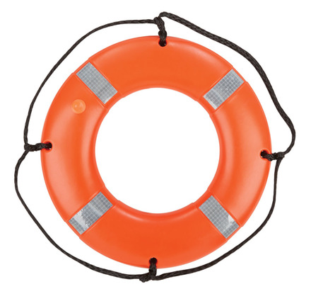 Ring Buoy - 24 inch picture