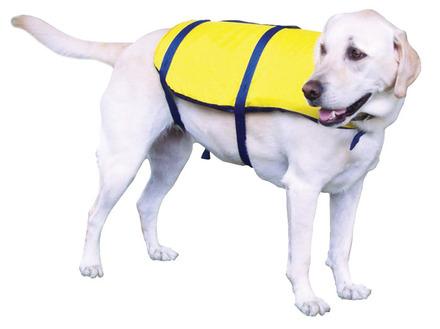 Nylon Pet Vest picture