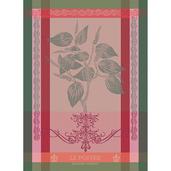 """Brin de Poivre Rose 22""""x30"""" Kitchen Towel, 100% Cotton"""