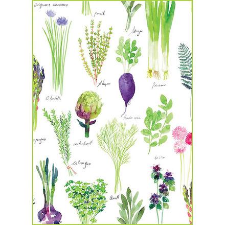 """Mille Potager Printemps Kitchen Towel 20""""x28"""", 100% Cotton picture"""