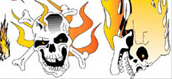 "Flaming Skulls,  6"" x 8"" Decal picture"