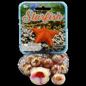 Starfish Game Net 4-pack