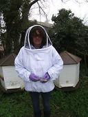 Bee Jacket with hood Adult Size