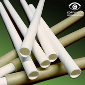 Bee tube paper liners pk 15