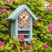 Bee & Bug Biome