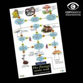 FG16 Field Guide - Fungi