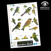 FG1 Field Guide - Birds