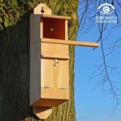 Tawny Owl Nest Box FREE P&P