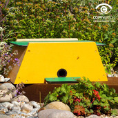Bumblebee or Mini Mammal Nest Box