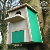 Barn Owl Nest Box 2017
