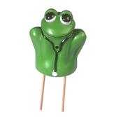 Doctor Frog™