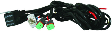 Dual (2 Plug) Wiring Harness picture