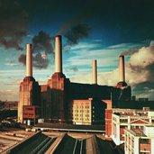 Pink Floyd - Animals (LP)