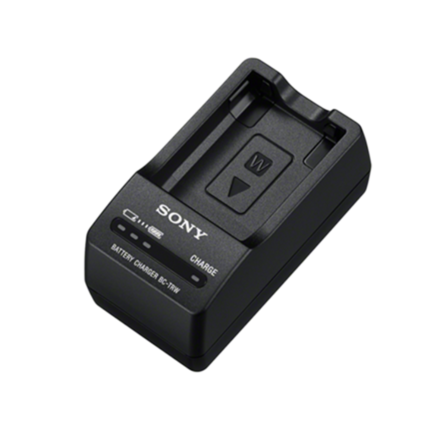 Travel charger for W battery picture