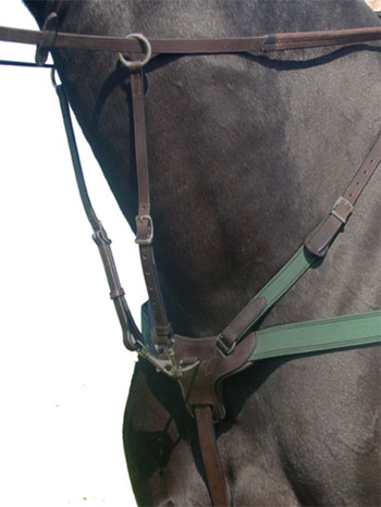 Combination Breastplate, brown, full picture
