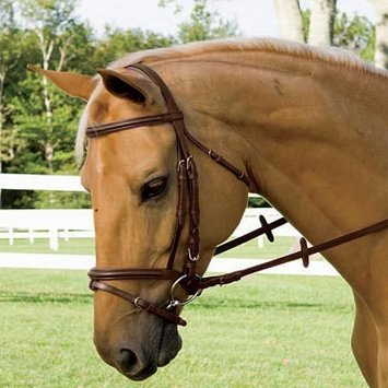 Flash Bridle With Reins, Brown Cob picture