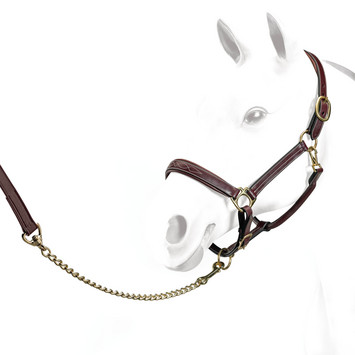EQUIPE HEADCOLLAR + STITCHING BROWN PONY picture