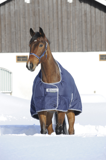 CELTIC STABLE LIGHT, 5'0, Navy-10 picture