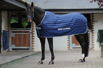 SELECT UNDER RUG 150 SD, 5'3, Navy-10 picture