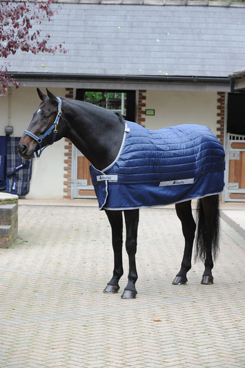 SELECT UNDER RUG 300 SL, 5'3, Navy-10 picture