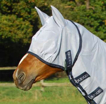 BUZZ OFF FLY MASK, XXS, Blue-02 picture