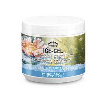 ICE GEL INDIVIDUAL, 500ML picture