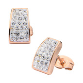 Rose Gold IP  with Crystal Stud Earrings