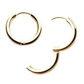 Stainless Steel Gold IP Hoop Earrings