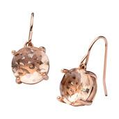 Rose Gold IP Glass Dangle Earrings