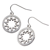 Crystal Circle Hook Dangle Earrings
