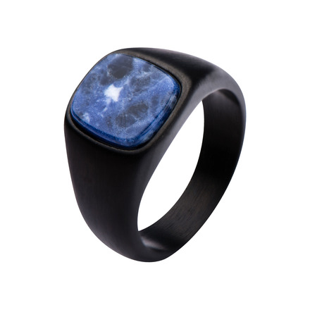 Black IP with Sodalite Signet Polished Ring picture