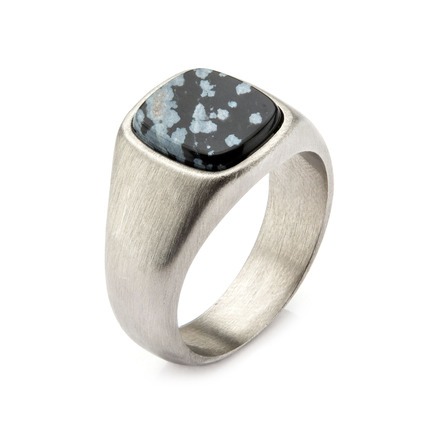 Steel with Snowflakes Signet Polished Ring picture