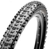 29x2.25 Aspen 120TPI Tubeless Ready