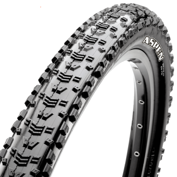29x2.25 Aspen 120TPI EXO/Tubeless Ready picture