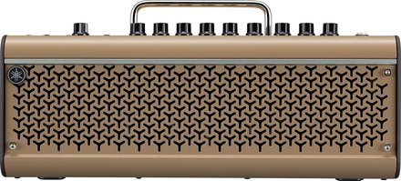 THR30IIA Wireless Acoustic Amp picture