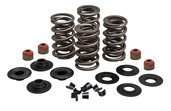 """Dual Spring Kit, H.T. Steel, 0.650"""" Lift, Various HD® Applications"""