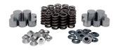 "Shim-in-Tappet Spring Kit, Titanium, 0.445"" Lift,  Arctic Cat®, Various 998cc Triples, 2017-2019"