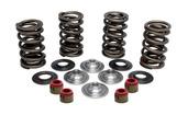 """Racing Spring Kit, Titanium, 0.600"""" Lift, Various HD® Applications"""